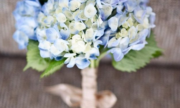 Buy Hydrangea Wedding Bouquet