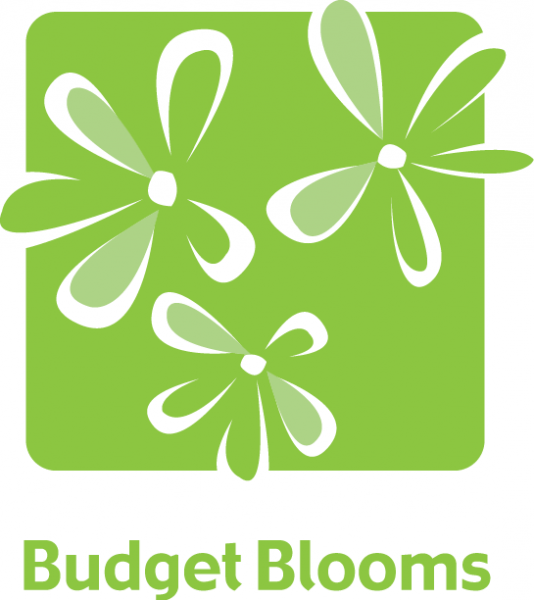 Budget Blooms