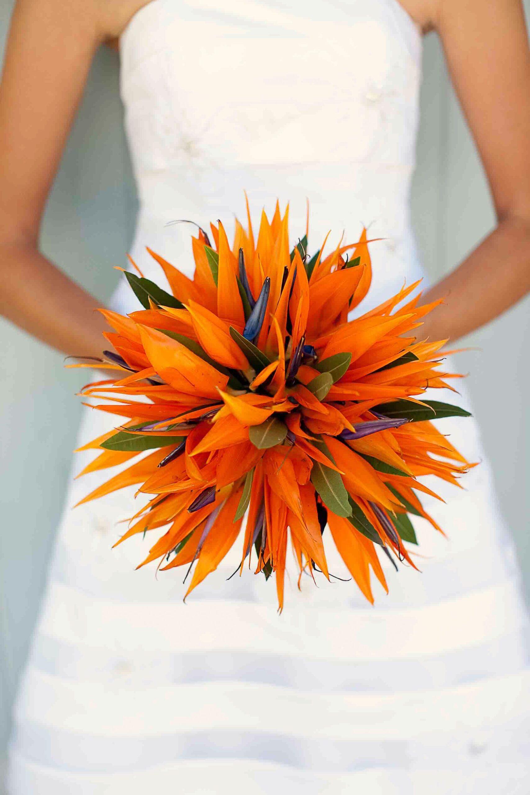 bird of paradise wedding bouquet 1