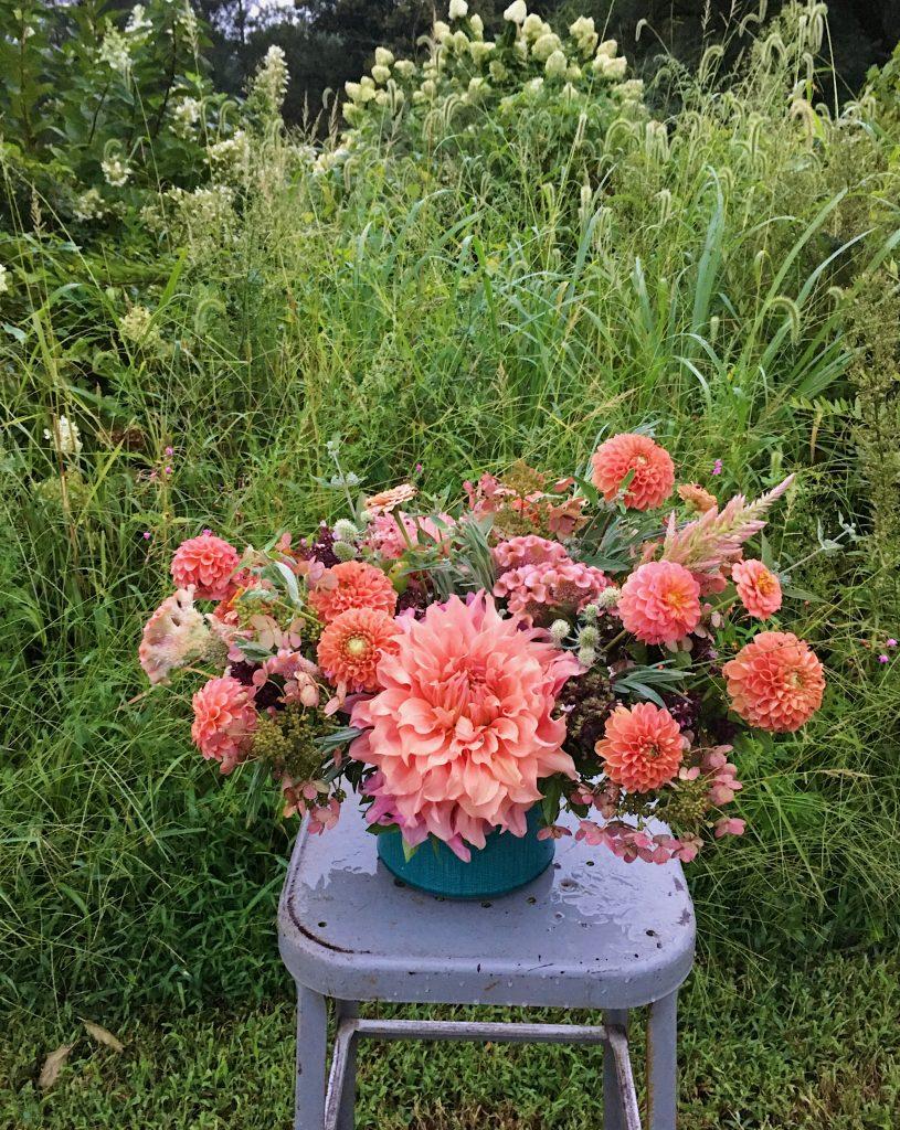 Coral Garden Flowers
